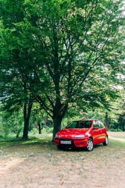 Fiat Punto II 1.2 16V HLX a fa alatt